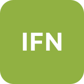 Interdisziplinäres Forschungs- und Nachwuchsnetzwerk